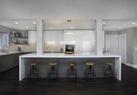 Sleek Contemporary Kitchen Remodel