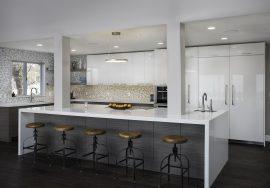 Sleek Contemporary Kitchen Remodel